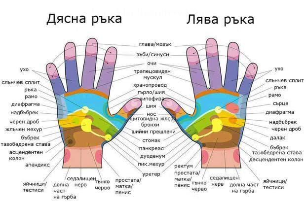 Рефлексогенни зони на ръцете