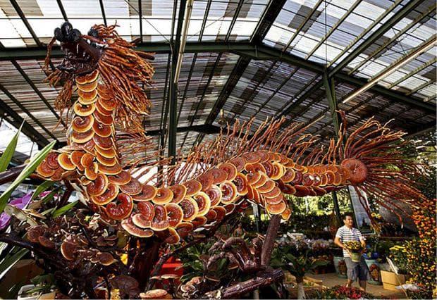 дракон от рейши