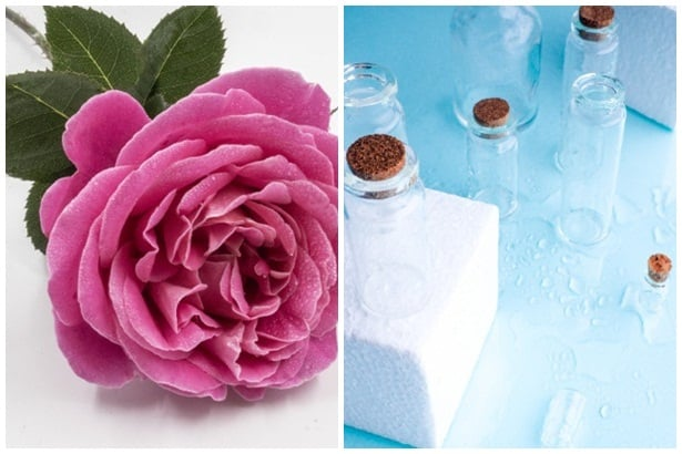 Роза, глицерин