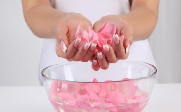 листа от роза срещу напукани устни