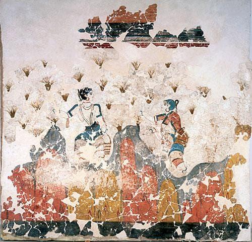 стеноспис, открит в Санторини