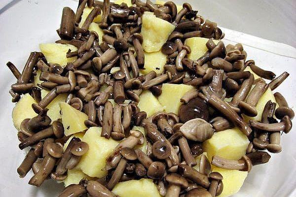 картофи и гъби