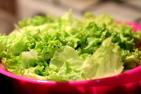 Маруля, зелена салата