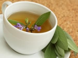 чай от салвия