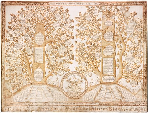 Родословното дърво на Матиас Бухингер - един от неговите шедьоври