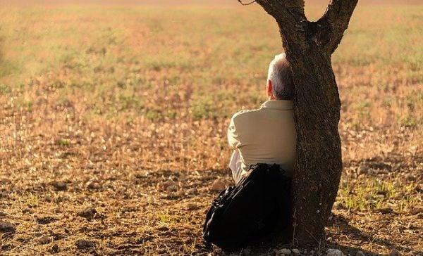 мъж, дърво, поляна
