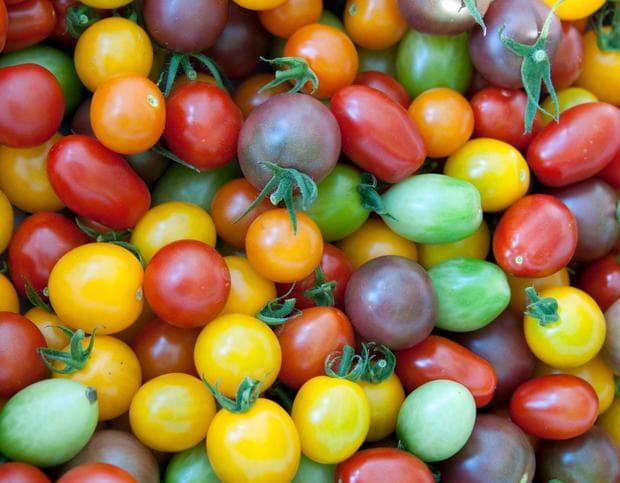 сортове домати