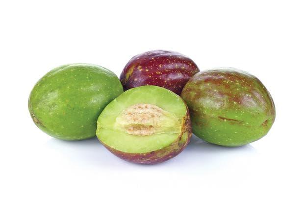 плод на харитаки - зелен