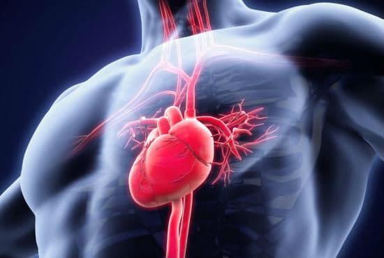 Сърдечно-съдови симптоми при анафилаксия