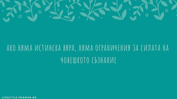 цитат