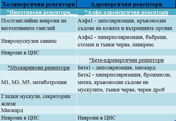 рецептори за медиаторите на ВНС