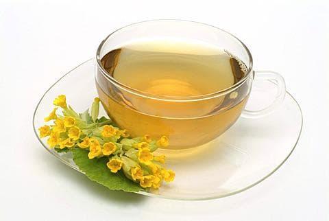 чай от иглика