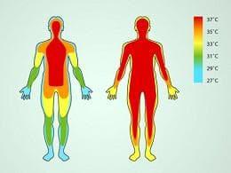 температура на тялото