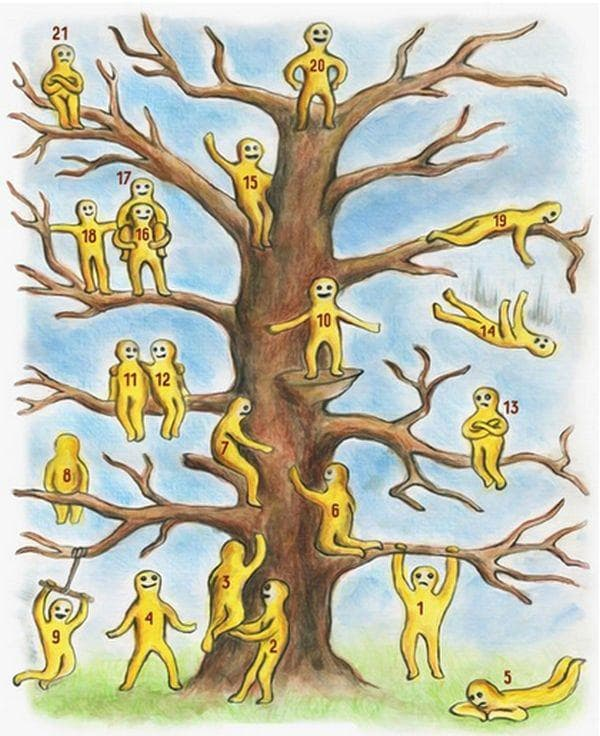 Дърво-хора-избор