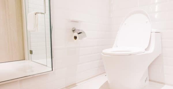Почистване на тоалетната