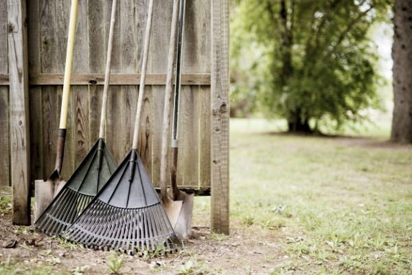 Търмъци и лопати