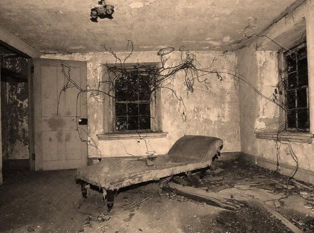 Призрачна стая