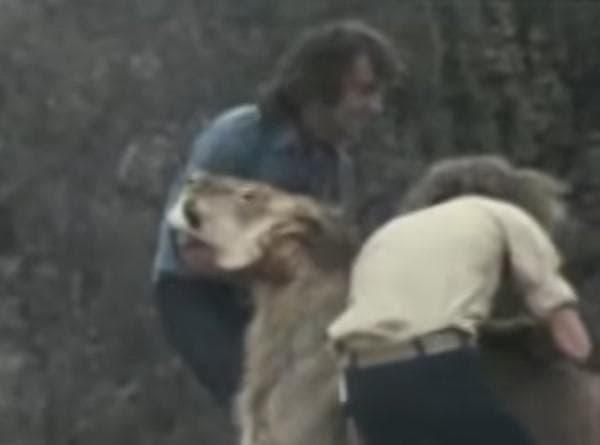 Хора с лъв