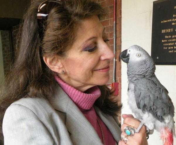 Жена с папагал