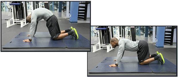 Упражнение - котешки гръб
