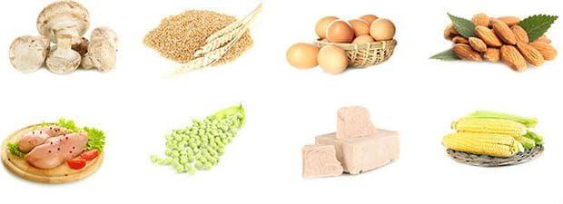 Хранителни източници на витамин В3