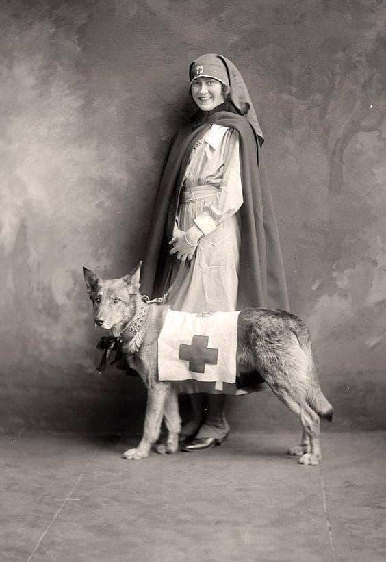 Медицинска сестра с куче спасител