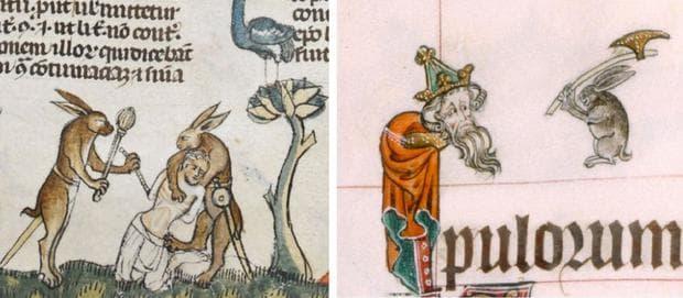 Зайци, победили хора в двубой