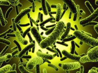други постинфекциозни артропатии при болести,   класифицирани другаде