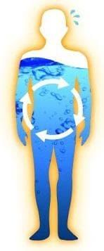 телесни течности