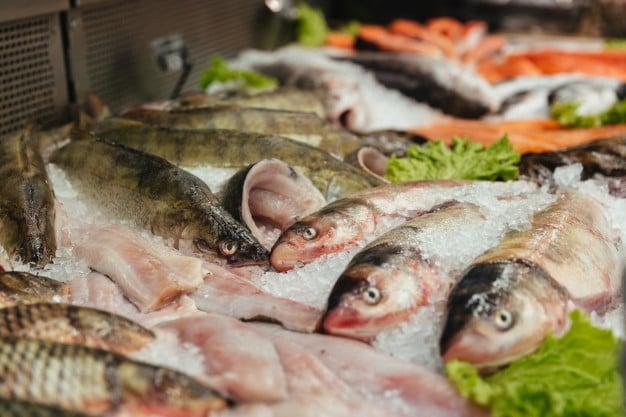 Каква е разликата във вкуса и състава на пресните и замразените риби