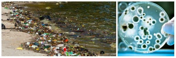 Замърсяване на водата: причинители