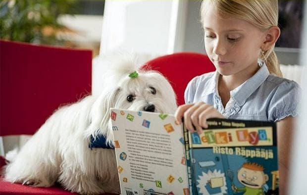 ученик и куче