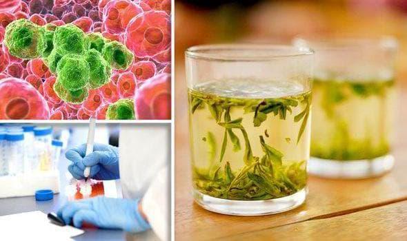 Зелен чай и рак