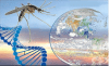 Роля на околната среда и социално-битовите условия при инфекция
