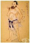 Основи на Китайската медицина