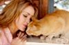 Контактът с котка при бременност може да доведе до шизофрения