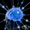 Увреждане на част от главния мозък може да бъде компенсирано от други здрави части от него