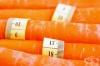 Тридневна диета с моркови и мед
