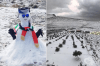 Сняг покри най-високия връх в Обединените арабски емирства