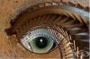 23 случайни неща, които мозъкът ви ще разпознае като очи