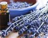 Етерични масла за здраве и красота през зимата