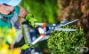 Поддържането на градината може да ви помогне да живеете до 100 години