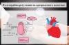 Дълготрайна регулация на артериалното налягане