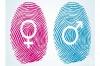 Какви са разликите между биологичния пол, социалната полова роля, половата идентичност и сексуалната ориентация