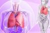 Направете си сироп за пречистване на дробовете от чесън, куркума и джинджифил