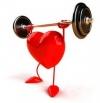 Влияние на физическата активност върху сърдечно-съдовата система