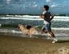 Най-добрите породи кучета за тренировъчни партньори на бегачите