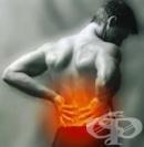 Алтернативно лечение на дископатия