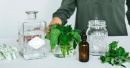 Билкови тинктури - приготвяне, рецепти и употреба