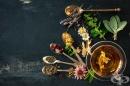 Каталог на билки и лечебни растения